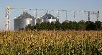 Sukup Chain Loop Conveyors - DHS Grain Ltd